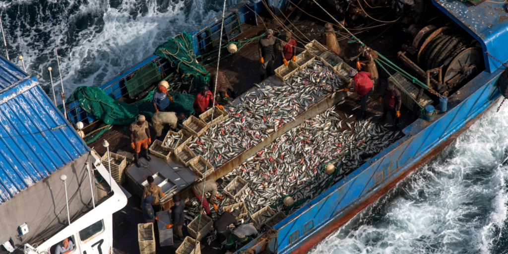 China Stealing Fish Stock Of The World: Flash point of Conflicts: China using cheap labor from African nations and fishing in African Waters driving the local population in poverty.