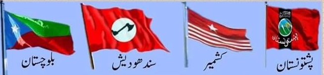 Flag of various independent movement ongoing in Pakistan