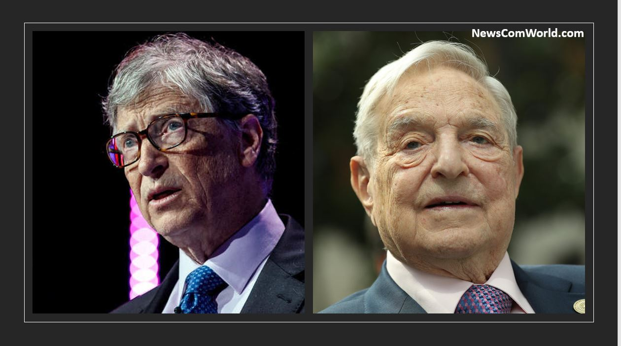 Did Open Society Soros and Microsoft by Bill Gates fund the Council of Europe?
