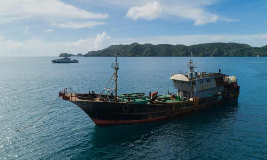 Chinese Illegal Fishing Loot : Tiny Pacific Nation of Palau Detains 'Illegal' Chinese Fishing Vessel